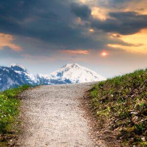 Timberview Trail Run Colorado